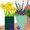 Virágbolt virágboltok üzletek oszágszerte településenként
